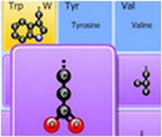 Amino Acid Match