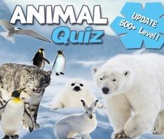 Play Animal Quiz