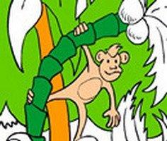 Jungle Coloring Book