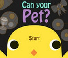 Can Your Pet