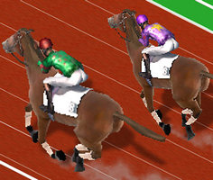 Play Derby Racing