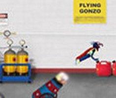 Flying Gonzo