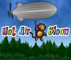Hot Air Bloon