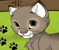 Play My Kitten