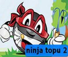 Ninja Ball 2